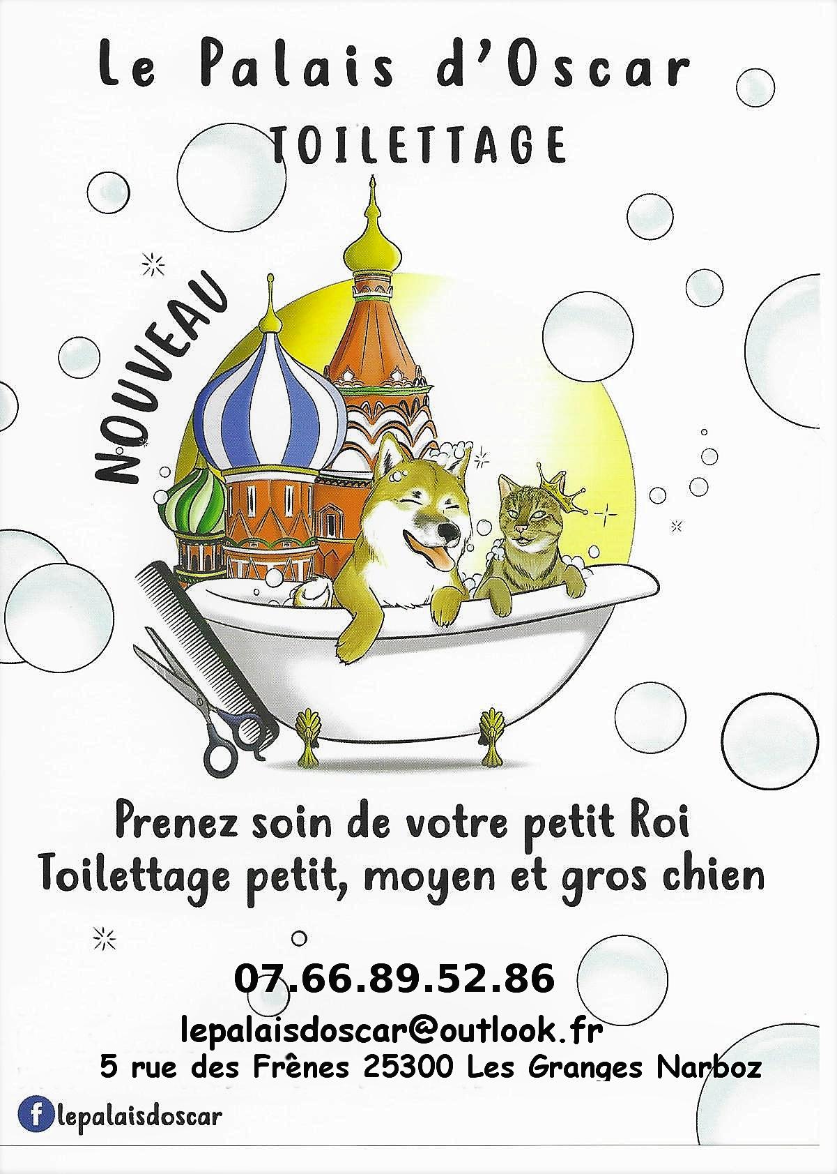 Vaccin Chiot Calendrier.Accueil